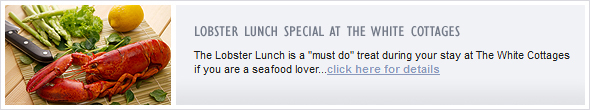 "The Lobster Lunch is a ""must do"" treat during your stay at The White Cottages if you are a seafood lover...click here for details"